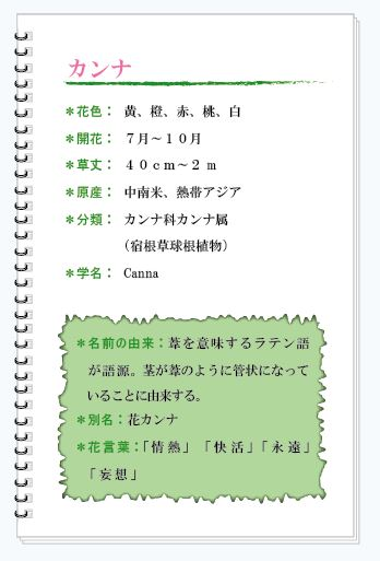 カンナ花MEMO.JPG