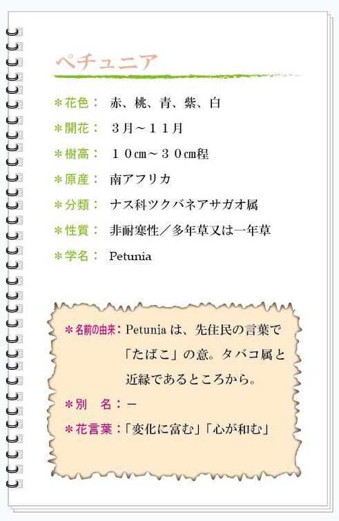 ペチュニア花MEMO.jpg