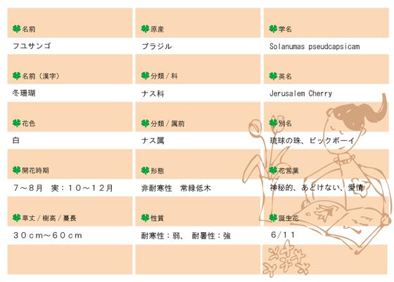 今日の花MEMOフユサンゴ.jpg