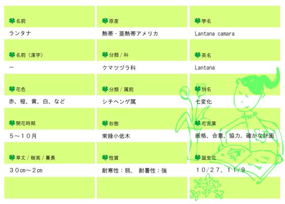 今日の花MEMOランタナ.jpg