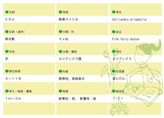 今日の花MEMO緋ネム560.jpg