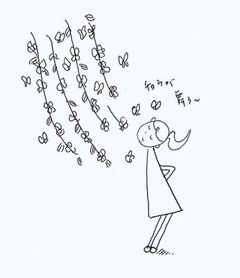 185雲南黄梅蝶が舞う.jpg
