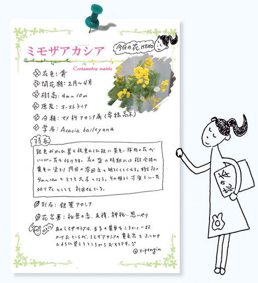 190ミモザアカシア花MEMO.jpg