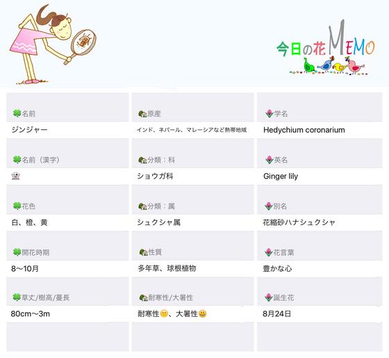 今日の花MEMOジンジャーのコピー.jpg
