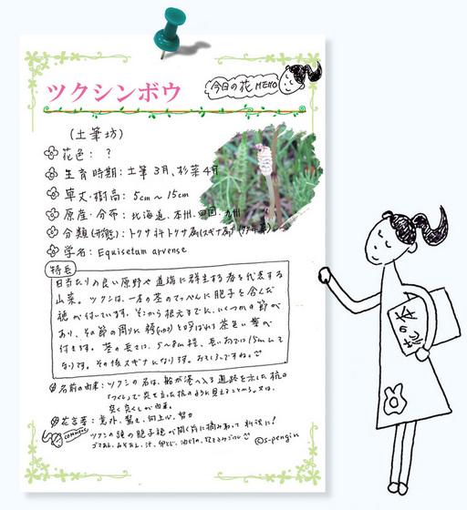 今日の花MEMOツクシンボウ使用.jpg