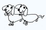 犬07.jpg